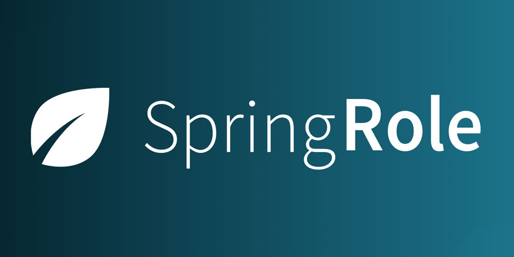 SpringRole (SPRING) ICO Review & Analysis – SpringRole ICO Review