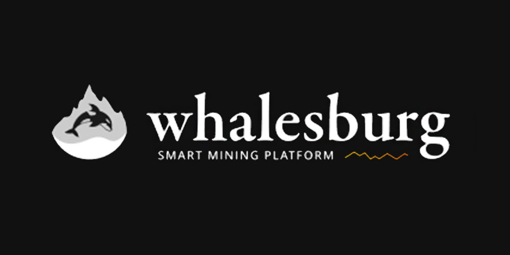 Whalesburg (WBT) ICO Review & Analysis – Whalesburg ICO Review