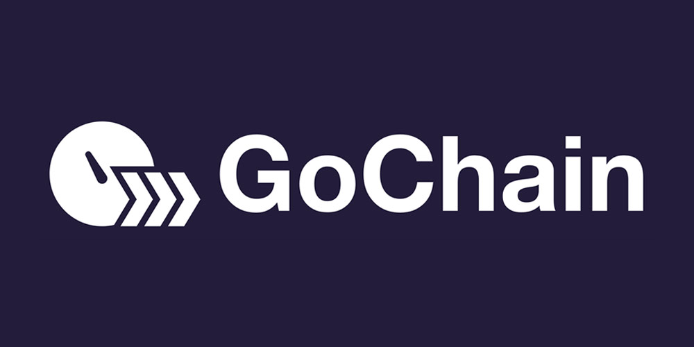 GoChain (GO) ICO Review & Analysis – GoChain Positives & Negatives